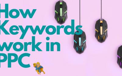 How Do Keywords Work in PPC